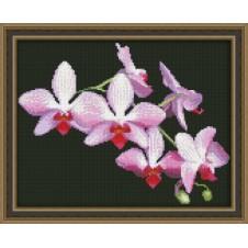 """Набор для вышивания крестиком """"Ветка орхидеи"""""""